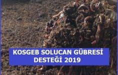 KOSGEB Solucan Gübresi Desteği 2019