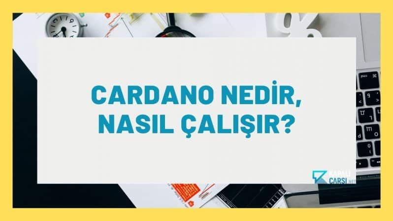 Cardano Nedir, Nasıl Çalışır?