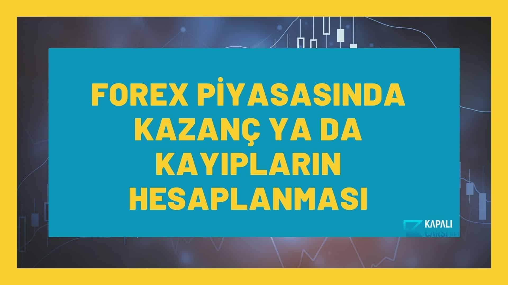 Forex Piyasasında Kazanç ya da Kayıpların Hesaplanması