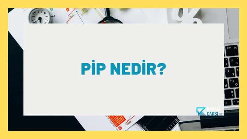 Pip Nedir?