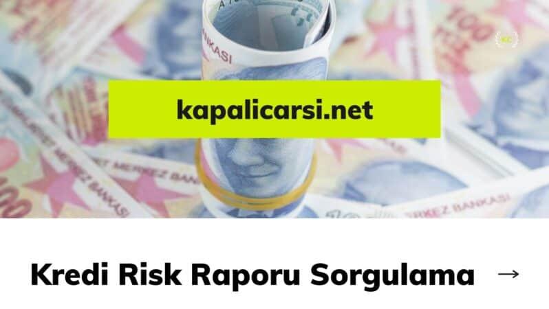 Kredi Risk Raporu Sorgulama