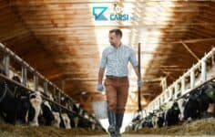 Devlet Destekli Hayvancılık Kredisi İle Hayvancılık Fırsatları