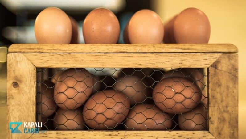 Yumurta Tavukçuluğu İçin Destek Geldi